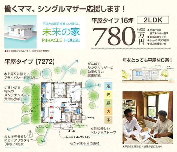 未来の家 平屋780万円