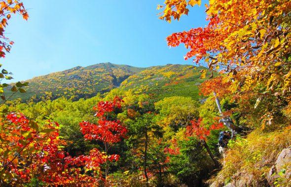 長野の秋を楽しもう