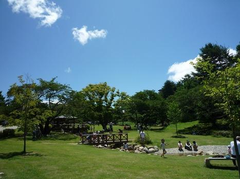 松本の公園にも自然がいっぱい