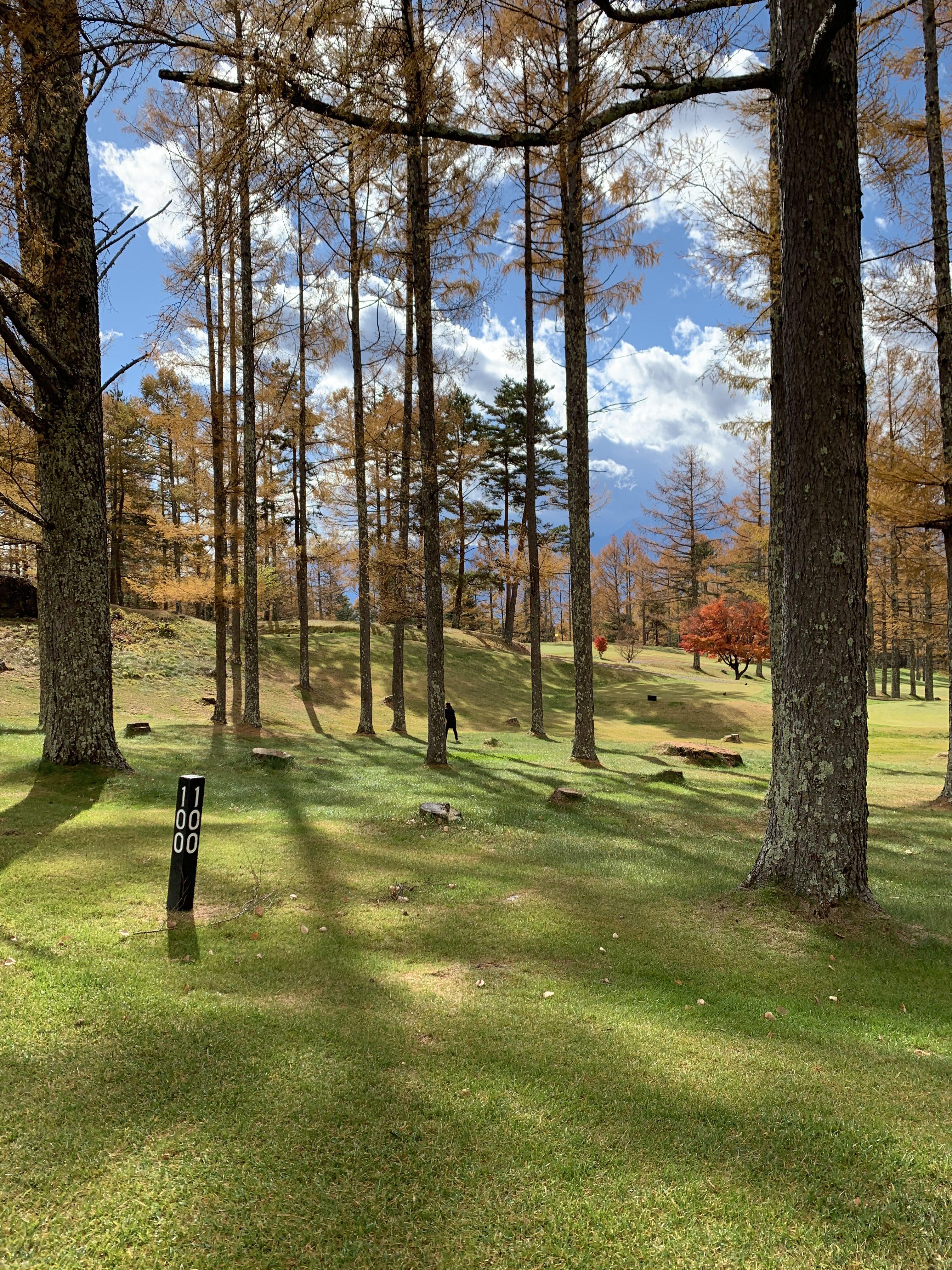 秋ゴルフの風景
