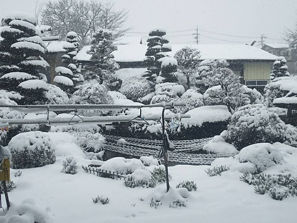 3月29日大雪