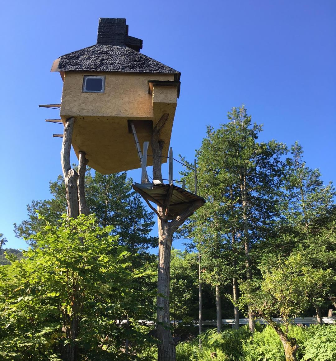 茅野市出身の建築家、藤森照信さんの作品の「高過庵」