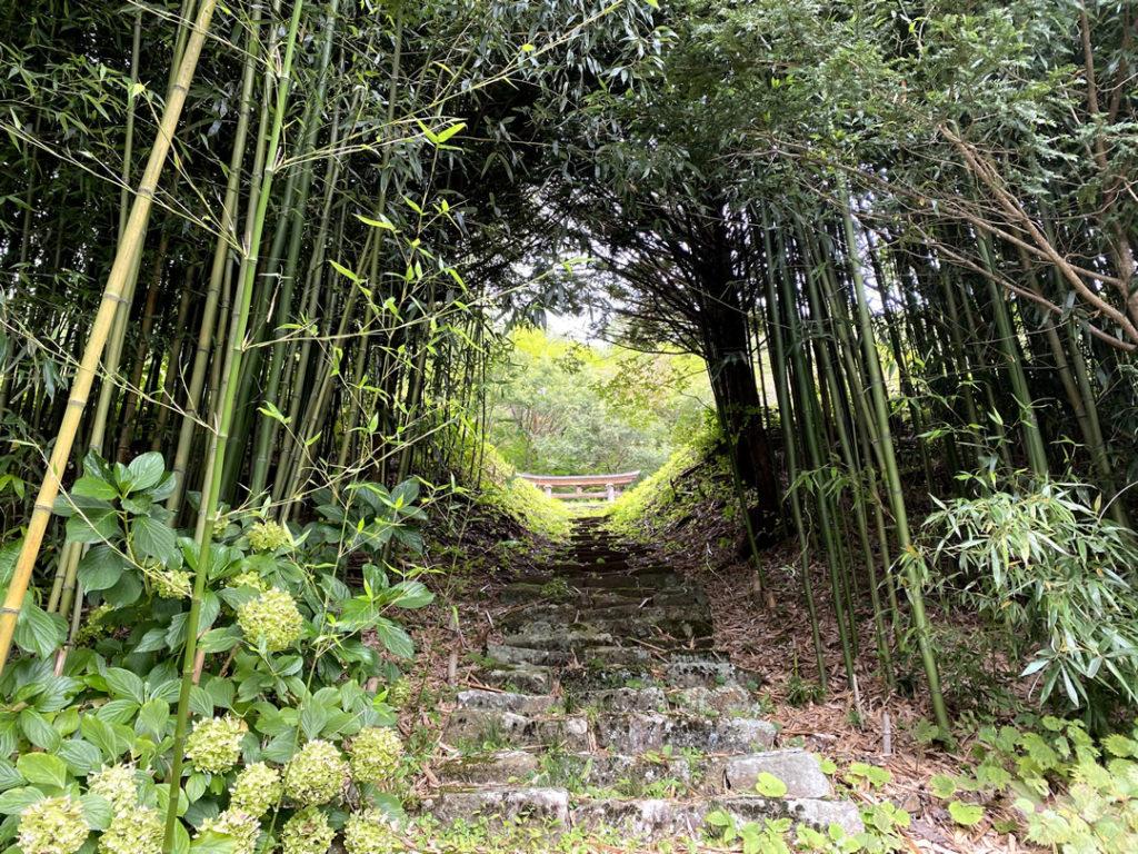 長野県保福寺峠に向かう道