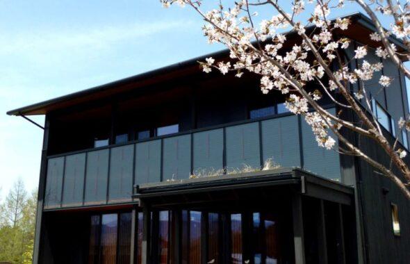 くらすの家外観と桜