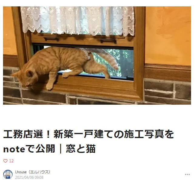 note窓と猫